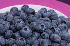 Close up of bilberries on a plate Royalty Free Stock Photos