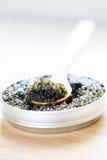 Close-up of black caviar Stock Images