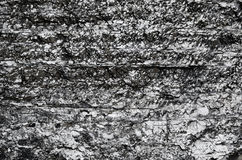 Close-up of black fossil coal surface Stock Images