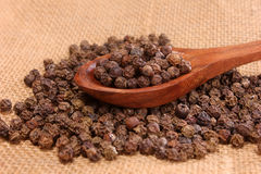 Close up of black pepper corns Royalty Free Stock Photography