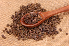 Close up of black pepper corns Royalty Free Stock Images