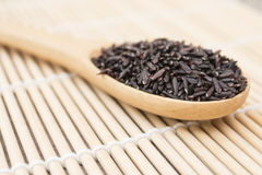 Close up Black rice berry on wooden spoon Royalty Free Stock Image