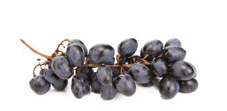 Close up of black ripe grapes. Stock Photography