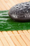 Close up of a black stone and a leaf Stock Photo