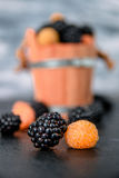 Close up of black and yellow raspberries on  table with basket  backround. Royalty Free Stock Photos