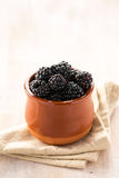 Close-up of blackberry in pot Royalty Free Stock Photos