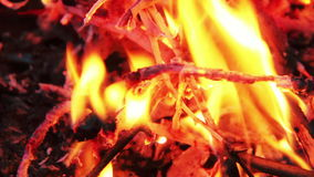 Close Up Of A Blazing Bonfire In The Night. Stock Images