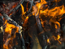 Close up of blazing fire. Stock Images