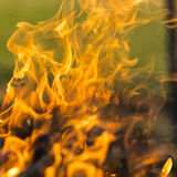 Close up of blazing fire. Stock Photos