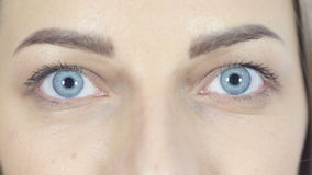 Close Up Of Blinking Eyes Looking At Camera, White Background,Young,,,, stock video