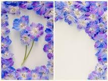 Close-up bloemensamenstelling met bloemen royalty-vrije stock foto