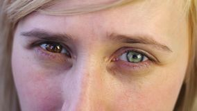 Close-up of a blonde with hyperchromic eyes stock video footage