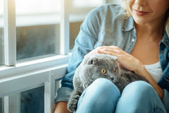 Close up of blonde woman petting her cat Royalty Free Stock Images