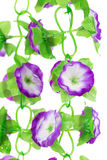 Close up of blooming artificial flowers isolated. Royalty Free Stock Image