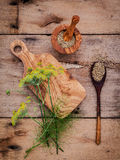 Close up blossoming branch of fennel and dried fennel seeds on r Royalty Free Stock Photo
