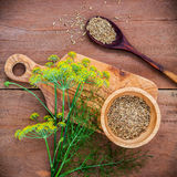 Close up blossoming branch of fennel and dried fennel seeds on r. Ustic wooden background with flat lay Royalty Free Stock Image