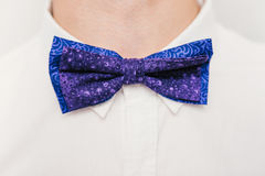Close-up blue bow tie on a man Stock Images