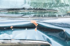 Close up of blue car trunk damaged and broken in the car crash accident and collision on the street in the traffic.  royalty free stock image