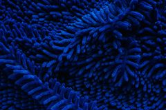 Close up of blue doormat or carpet textured stock photography