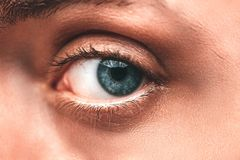 Close-up of the blue eye Royalty Free Stock Photos