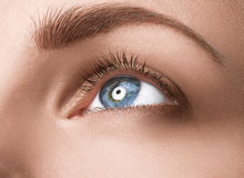 Close up blue eye with makeup Royalty Free Stock Photography