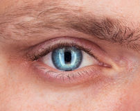 Close-up of blue eye a man Royalty Free Stock Photography
