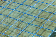 A Pool Net. A close up of a blue fiber pool net covering a outdoor pool stock image