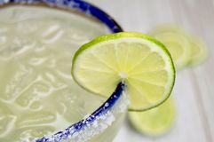 Salted margarita with lime slice. Close up of a blue rimmed margarita glass with lime slice with rustic white wood background Royalty Free Stock Photos