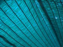 Blue shading net texture Stock Images