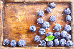Close-up of blueberries in an old wooden tray Stock Photography