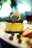 Close up blueberry cheese cake Royalty Free Stock Photos
