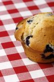 Close-up of blueberry muffin royalty free stock photo