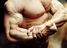 Close up on a bodybuilder biceps. Strong arm and chest Stock Image