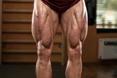 Close-Up of Bodybuilders Legs Ready For Competitive Sport Royalty Free Stock Images