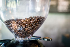 Close up boil vapor roasted coffee beans in coffee machine ready Stock Photo