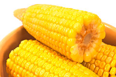 Close up of boiled corn in ceramic bowl Stock Images