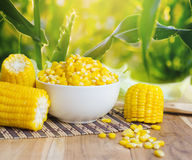 close up boiled corn on wood table stock images
