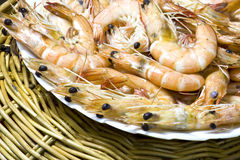 Close up boiled shrimp with shell on plate Stock Photography