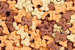 Close up of bone shaped dog treats in different colors and flavoures for rewarding and training small dogs and puppies. Macro food. Background texture royalty free stock images