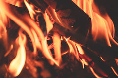 Close up of bonfire. Background Stock Photography