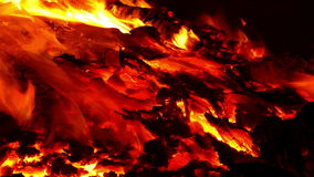 Close-up of a bonfire. stock video footage