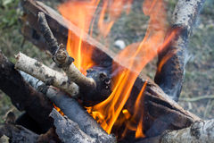 Close up of a bonfire with orange flames Stock Photos