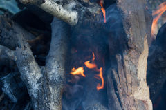 Close up of a bonfire with orange flames Royalty Free Stock Photos
