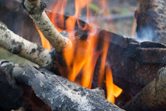 Close up of a bonfire with orange flames Stock Photo