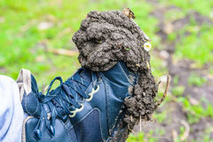 Close up boot with dry mud Stock Photos