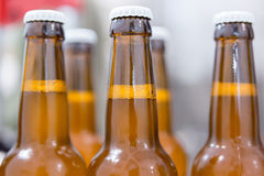 Close-up of bottles full of beer Royalty Free Stock Image