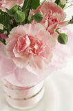 Close-up of bouquet. Of pink carnations Stock Photos