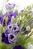 Close-up bouquet of blue flowers Stock Images