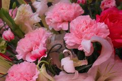Bouquet of colorful multicolored flowers with pink carnations group blooming and water drops pattern texture for background royalty free stock photography