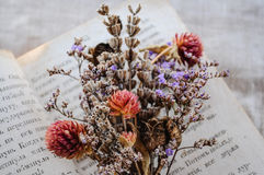 Close up bouquet of dry flowers. Close up of dry flowers bouquet on an old book stock photo